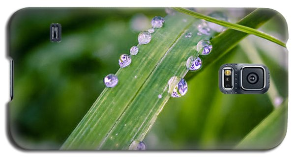 Drops On Grass Galaxy S5 Case by Rob Sellers