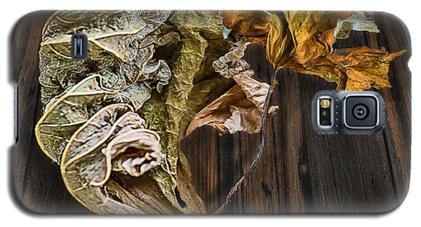 Galaxy S5 Case featuring the photograph Dry Leaves 11 by Vladimir Kholostykh