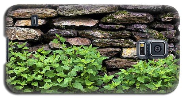 Dry Stone Wall  Galaxy S5 Case