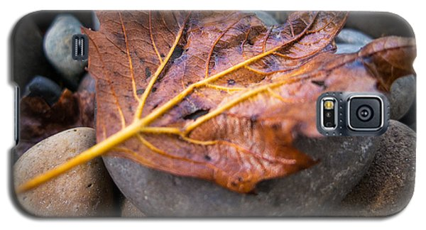 Galaxy S5 Case featuring the photograph Drying Leaf by Mike Lee