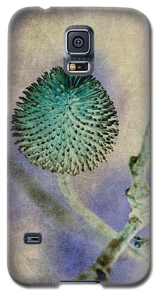 Galaxy S5 Case featuring the photograph Dryweed by WB Johnston