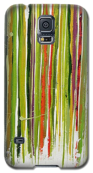 D.s. Color Band Skinny Galaxy S5 Case by Kathy Sheeran