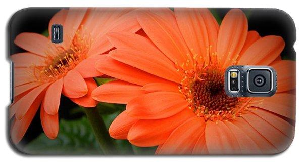 Duality Galaxy S5 Case