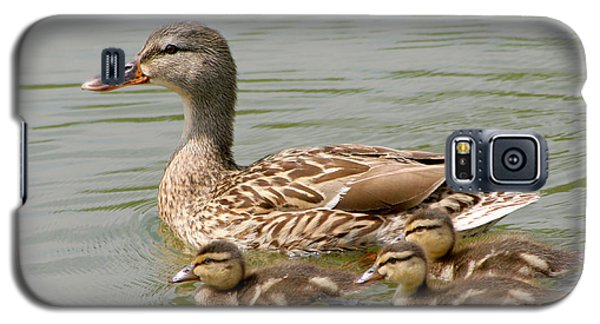Galaxy S5 Case featuring the photograph Duck Family by Bob and Jan Shriner