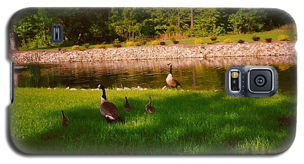 Duck Family Getting Back From Pond Galaxy S5 Case by Amazing Photographs AKA Christian Wilson