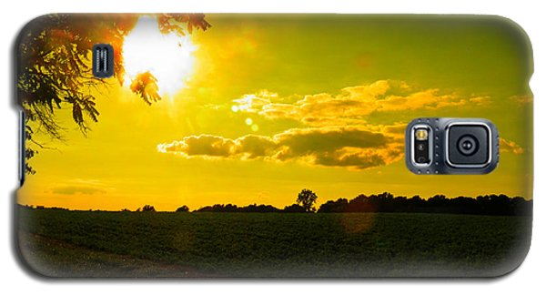 Duck Flying Low Cloud 2 Galaxy S5 Case by Nick Kirby