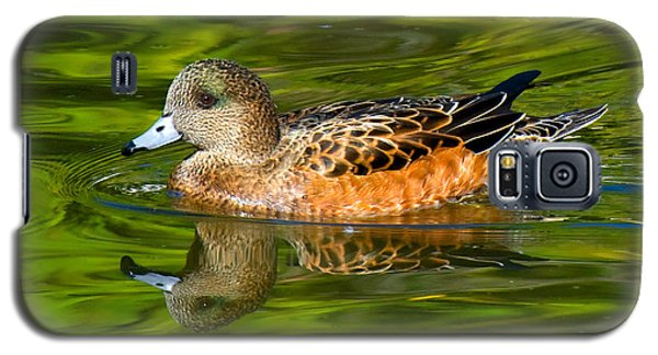Young Female Mallard Duck Galaxy S5 Case