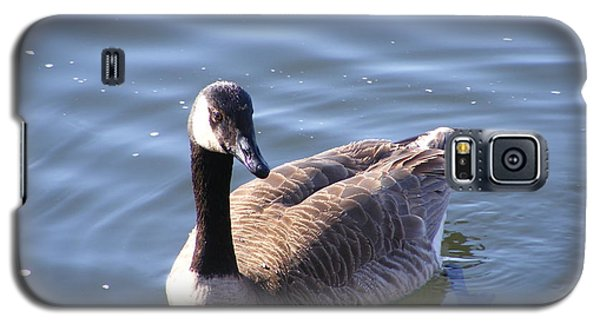 Duck On Water Galaxy S5 Case