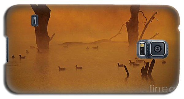 Duck Pond Galaxy S5 Case by Elizabeth Winter