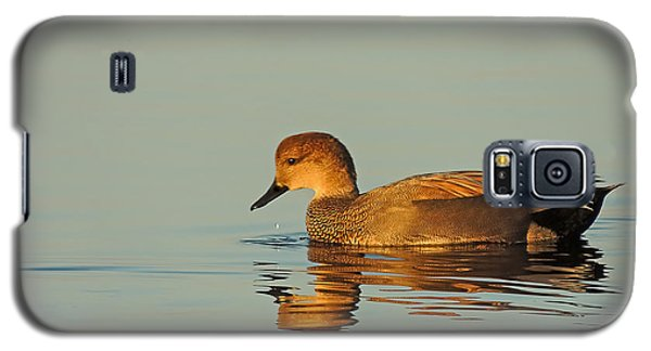 Duck Reflected Galaxy S5 Case