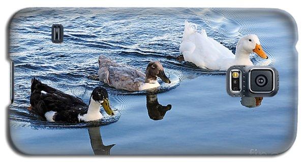 Duck Trio Reflecting Galaxy S5 Case