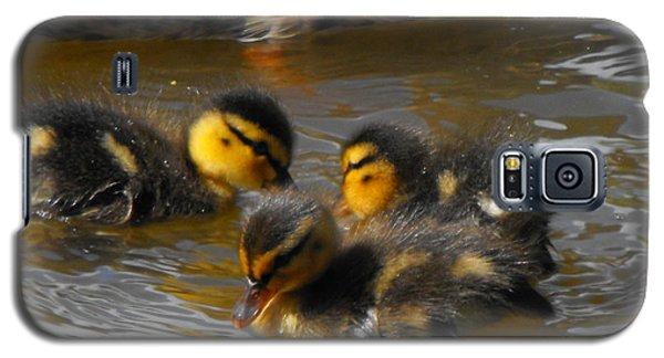 Duckling Splash Galaxy S5 Case