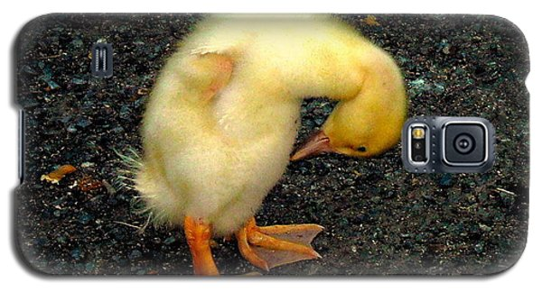 Duckling Takes A Bow Galaxy S5 Case