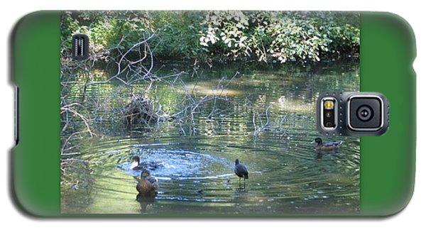Ducks A Dabbling Galaxy S5 Case