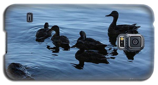 Ducks At Dusk Galaxy S5 Case