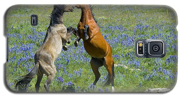 Dueling Mustangs Galaxy S5 Case