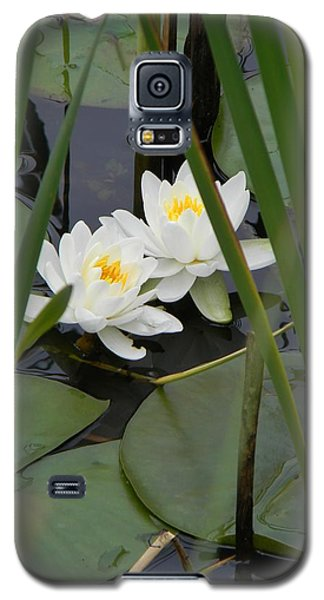 Galaxy S5 Case featuring the photograph Duet by Jean Goodwin Brooks