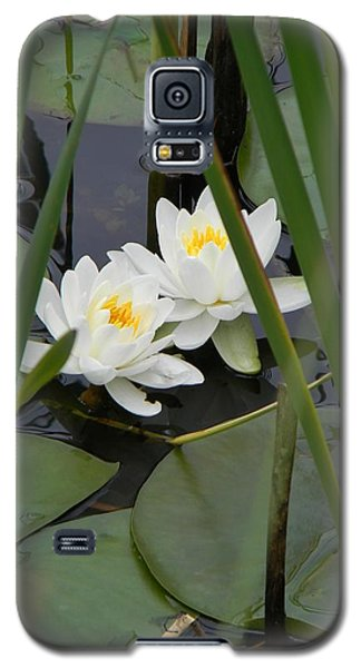 Duet Galaxy S5 Case by Jean Goodwin Brooks
