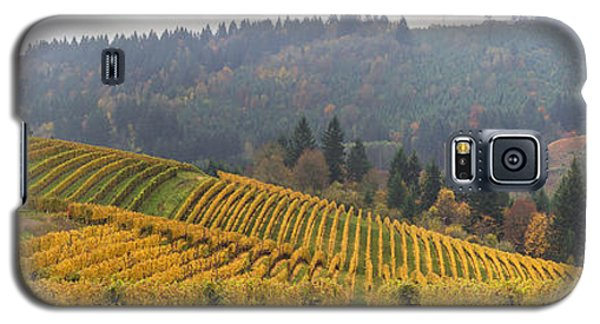 Dundee Oregon Vineyards Scenic Panorama Galaxy S5 Case