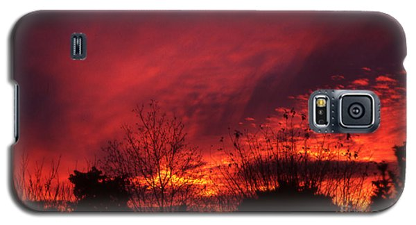 Dundee Sunset Galaxy S5 Case