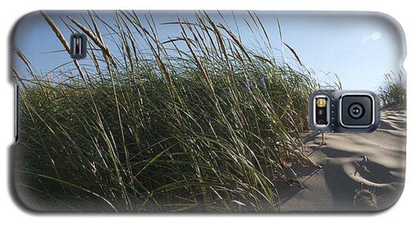 Dune Grass Galaxy S5 Case by Tara Lynn