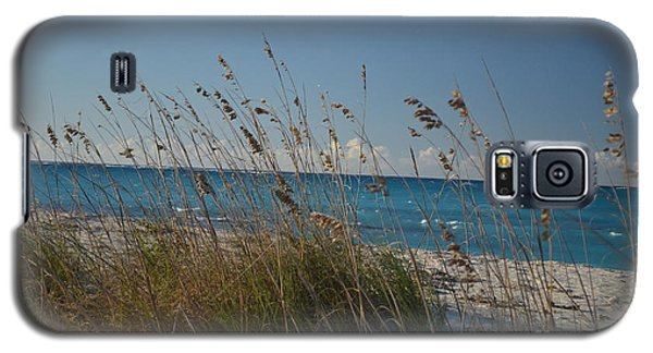 Galaxy S5 Case featuring the photograph Dune Grasses by Judy Wolinsky