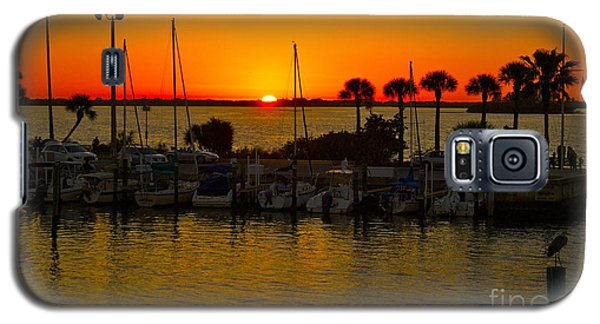 Galaxy S5 Case featuring the photograph Dunedin Sunset by Alice Mainville