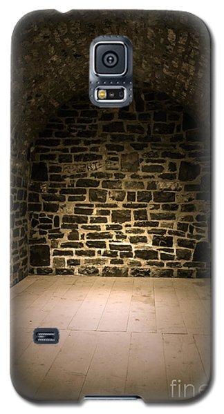 Dungeon Galaxy S5 Case - Dungeon by Edward Fielding