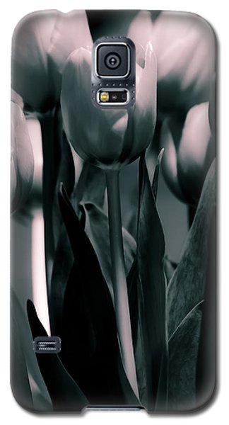 Duo-toned Tulip Galaxy S5 Case