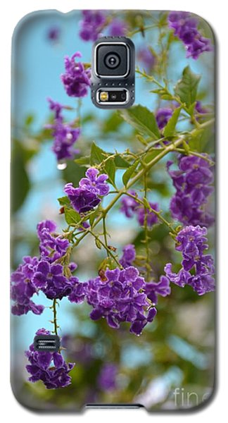 Galaxy S5 Case featuring the photograph Duranta- Fresh Morning by Darla Wood