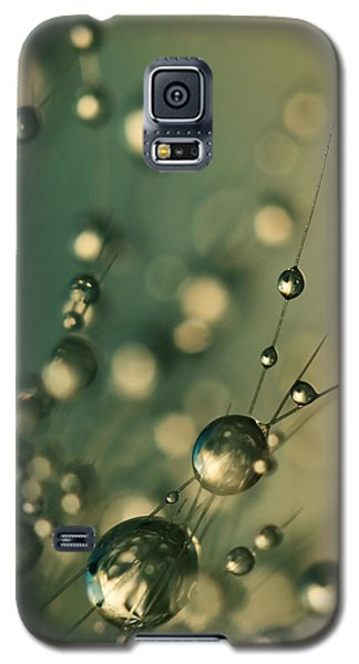 Galaxy S5 Case featuring the photograph Dusky Blue Cactus Drops by Sharon Johnstone