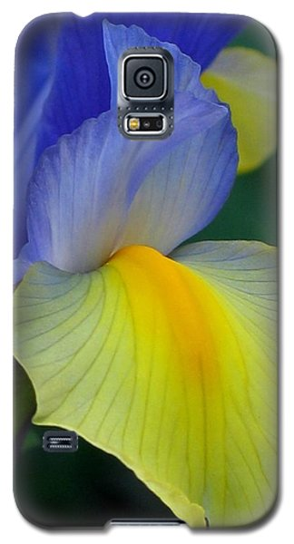 Dutch Beauty Galaxy S5 Case by Jennifer Wheatley Wolf