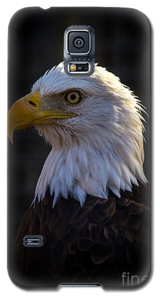 Eagle 1 Galaxy S5 Case by Jim McCain