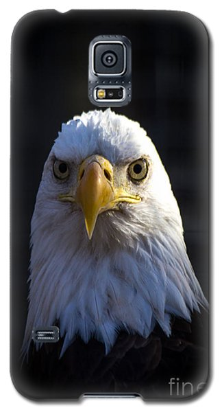Eagle 2 Galaxy S5 Case by Jim McCain