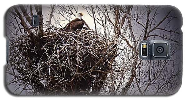 Eagle At Home Galaxy S5 Case