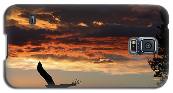 Eagle At Sunset Galaxy S5 Case