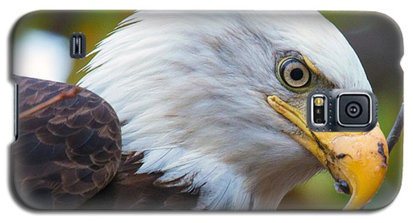 Galaxy S5 Case featuring the photograph Eagle Eye by Alan Raasch