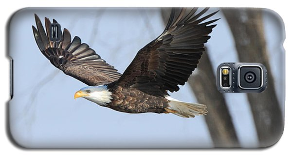 Eagle Flight Galaxy S5 Case