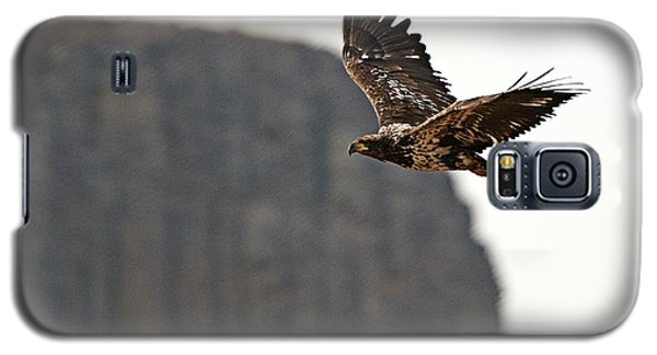 Eagle Flyby Galaxy S5 Case
