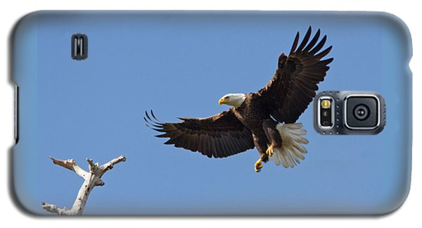 Eagle Landing 2 Galaxy S5 Case