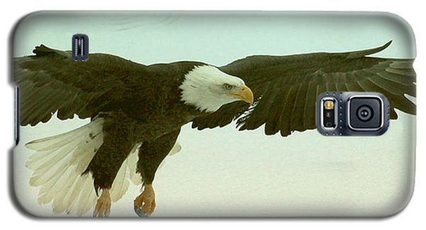Galaxy S5 Case featuring the photograph Eagle Landing by Myrna Bradshaw