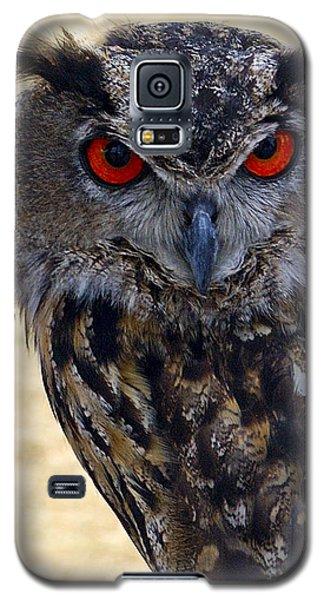 Eagle Owl Galaxy S5 Case