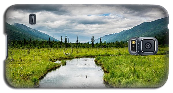 Eagle River Nature Center Galaxy S5 Case by Andrew Matwijec