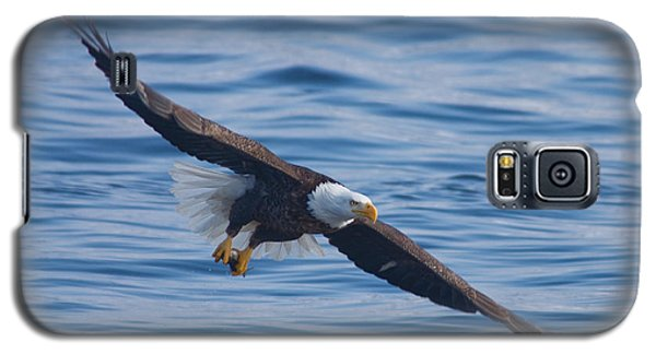 Eagle Soaring Galaxy S5 Case