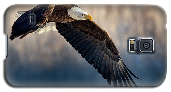 Eagle Sore Galaxy S5 Case