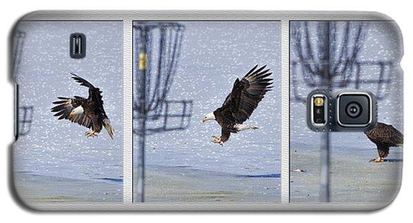 Eagle Triptych Galaxy S5 Case by Rob Graham