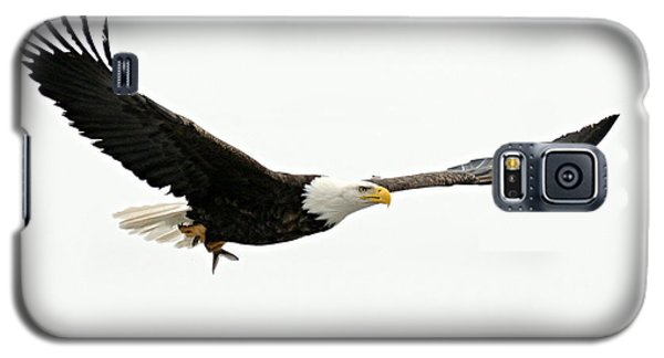 Eagle With Fish Galaxy S5 Case