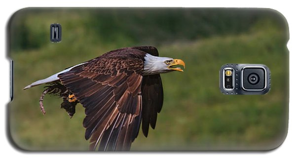 Eagle With Prey Galaxy S5 Case