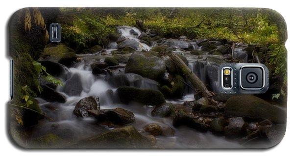 Galaxy S5 Case featuring the photograph Early Autumn Cascades by Ellen Heaverlo