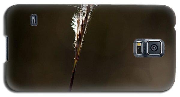 Early Autumn Galaxy S5 Case by Karen Slagle